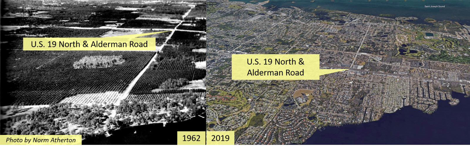 Palm Harbor Florida Area in 1962 and 2019